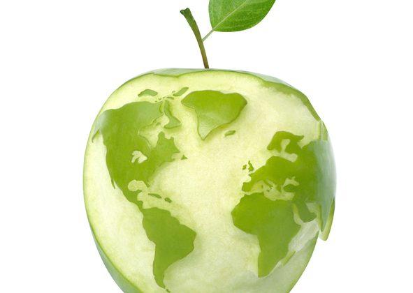Varför välja ekologiskt?