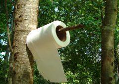 Miljövänligt toalettpapper
