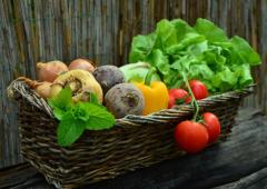 Misslyckats med dina odlingar? Gör så här